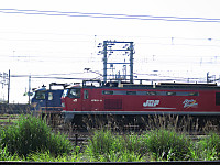 Img_3117